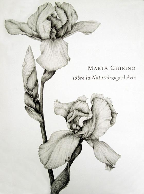 Dibujos y grabados de Marta Chirino  Floresyplantasnet
