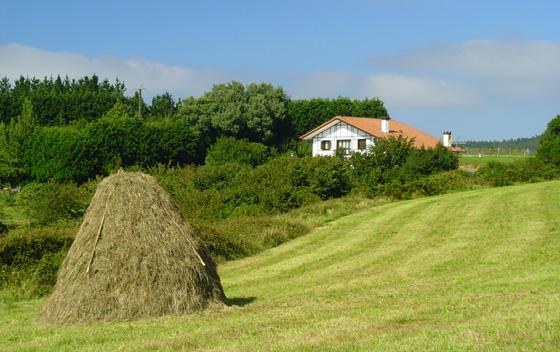 Metas como sistema de almacenaje de la hierba