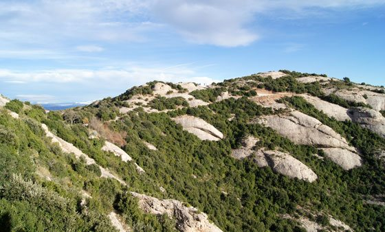 Parque Natural Macizo de Montserrat