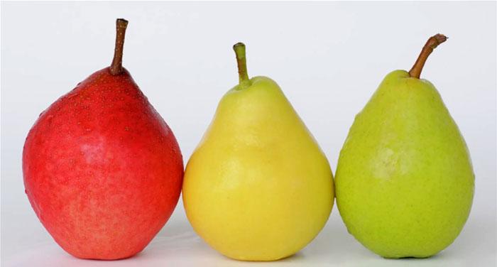 Variedades de peras PIQA