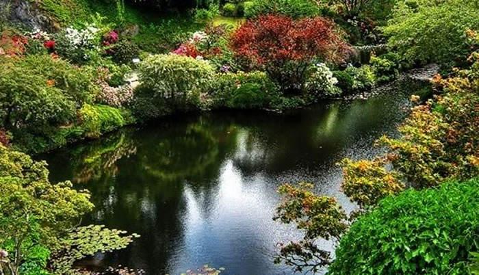Aspectos generales del agua en el estanque for Vendo estanque agua