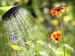 Cómo eliminar el cloro del agua de forma efectiva