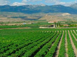 Recogidas itinerantes de envases agrícolas