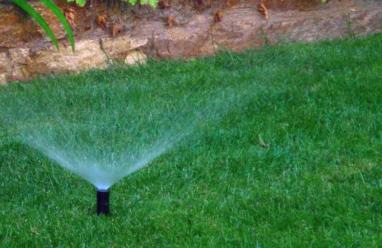 Consejos sobre el riego en terraza y jardín
