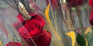 Rosas en Sant Jordi, Barcelona
