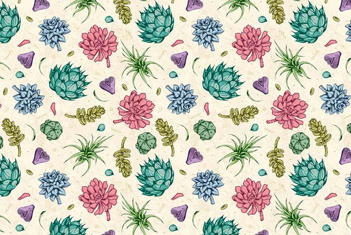 Plantas suculentas ilustradas por enisaurus revista de for Suculentas santiago