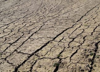 Suelo de cultivo erosionado