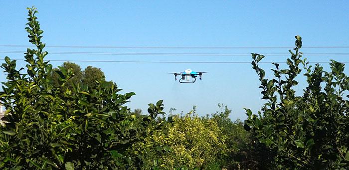 Tratamientos agrícolas con drones