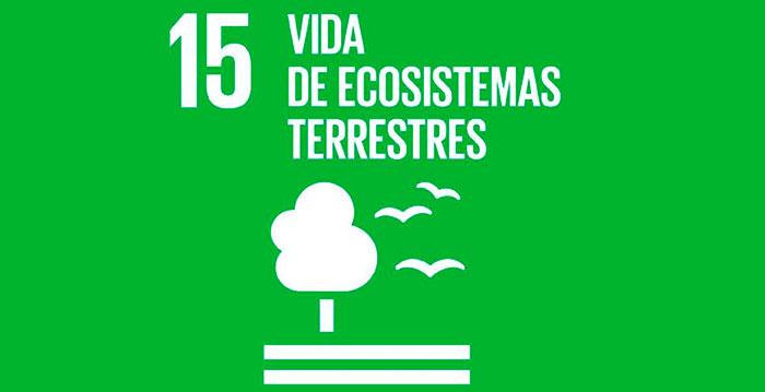Agenda 2030 él ODS número 15-Vida de Ecosistemas Terrestres